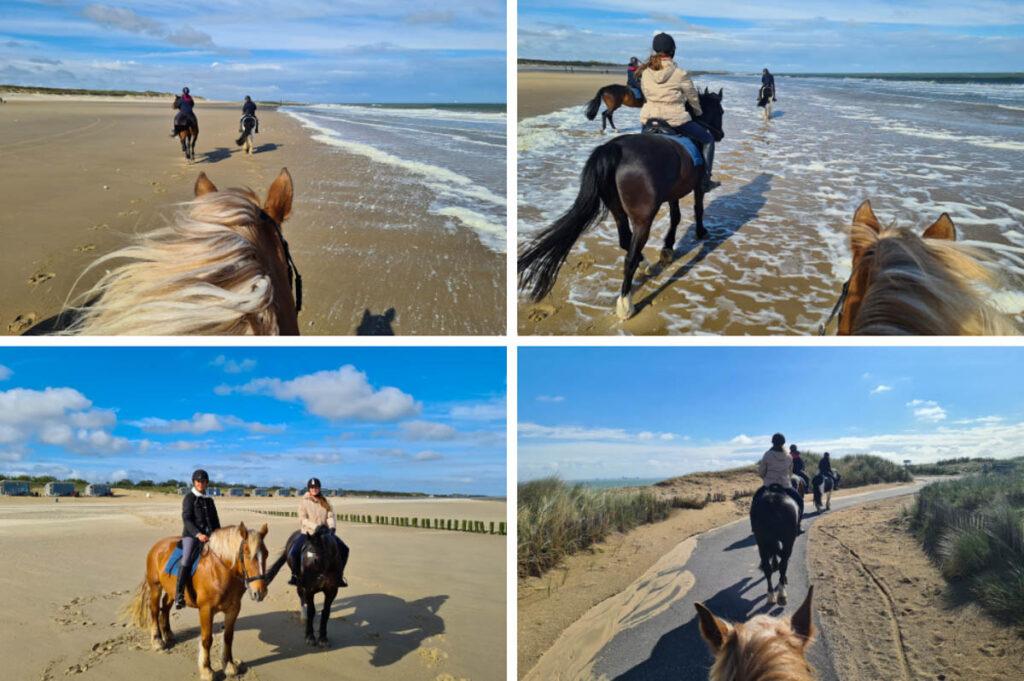 Paardrijden op het strand in Zeeuws Vlaanderen