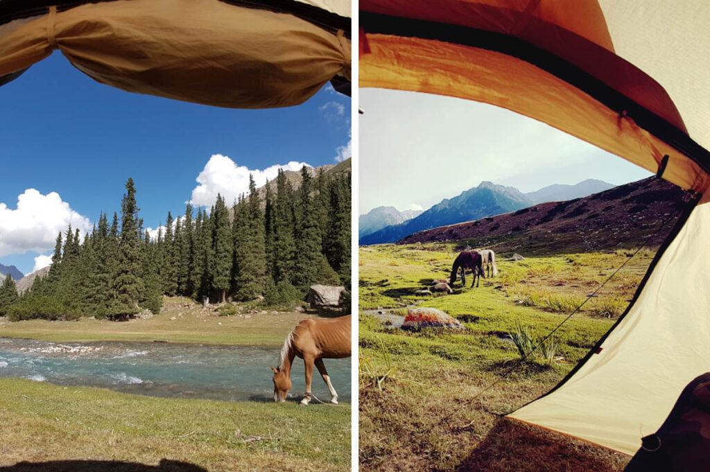 Trektocht te paard in Kirgizië