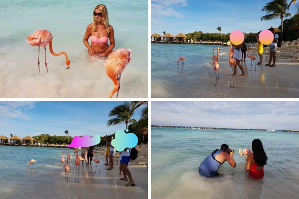 Renaissance Private Island (Flamingo Island) Aruba
