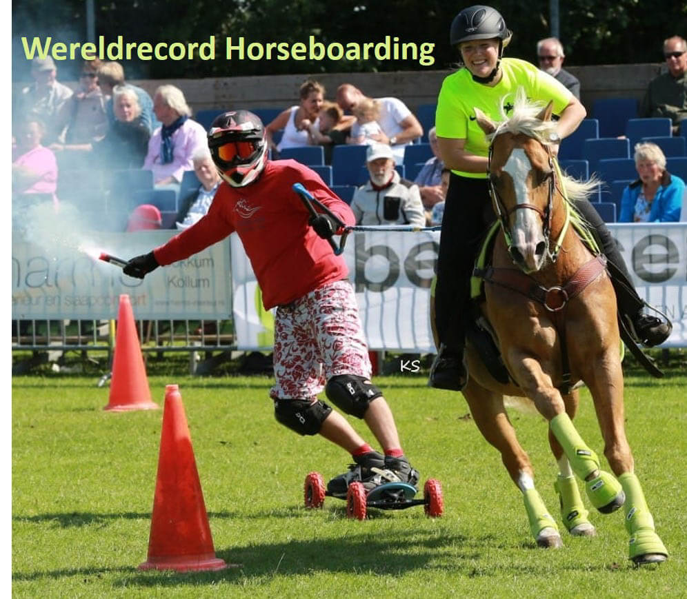 Horseboard Showteam