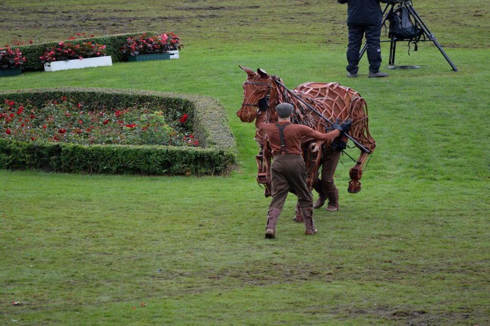 War Horse - CHIO Aachen