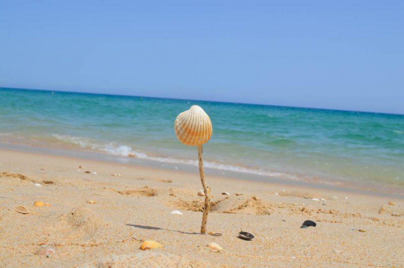 Vakantie ideeën, laat je inspireren