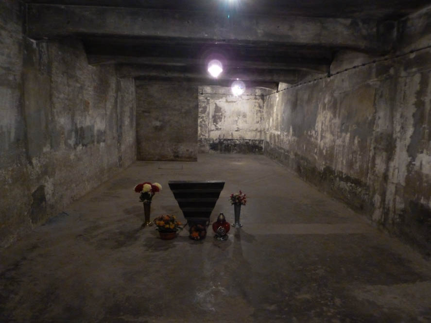 Auschwitz Birkenau (7)