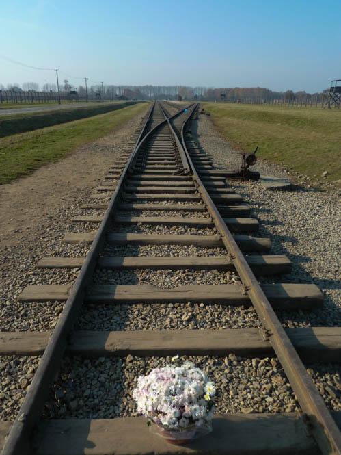 Fotoblog: Auschwitz in beeld