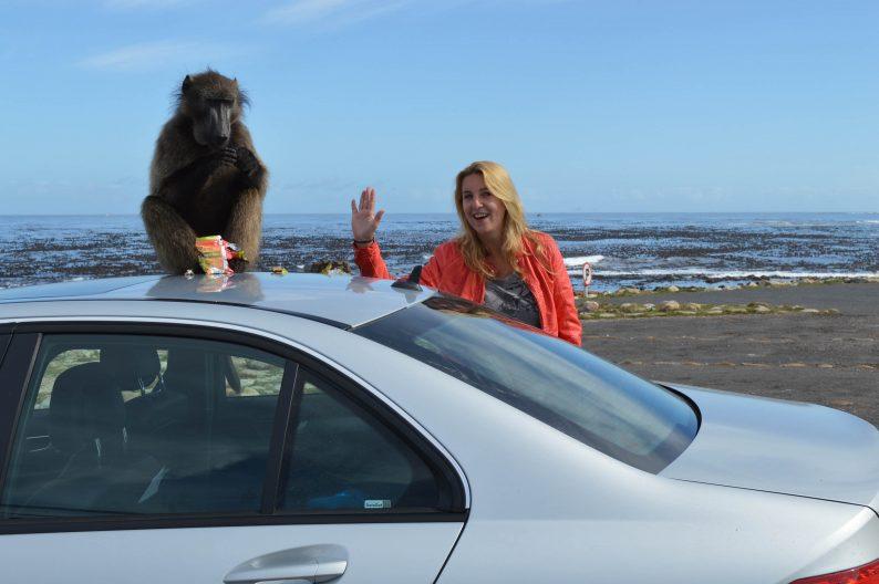 Auto huren in Zuid-Afrika