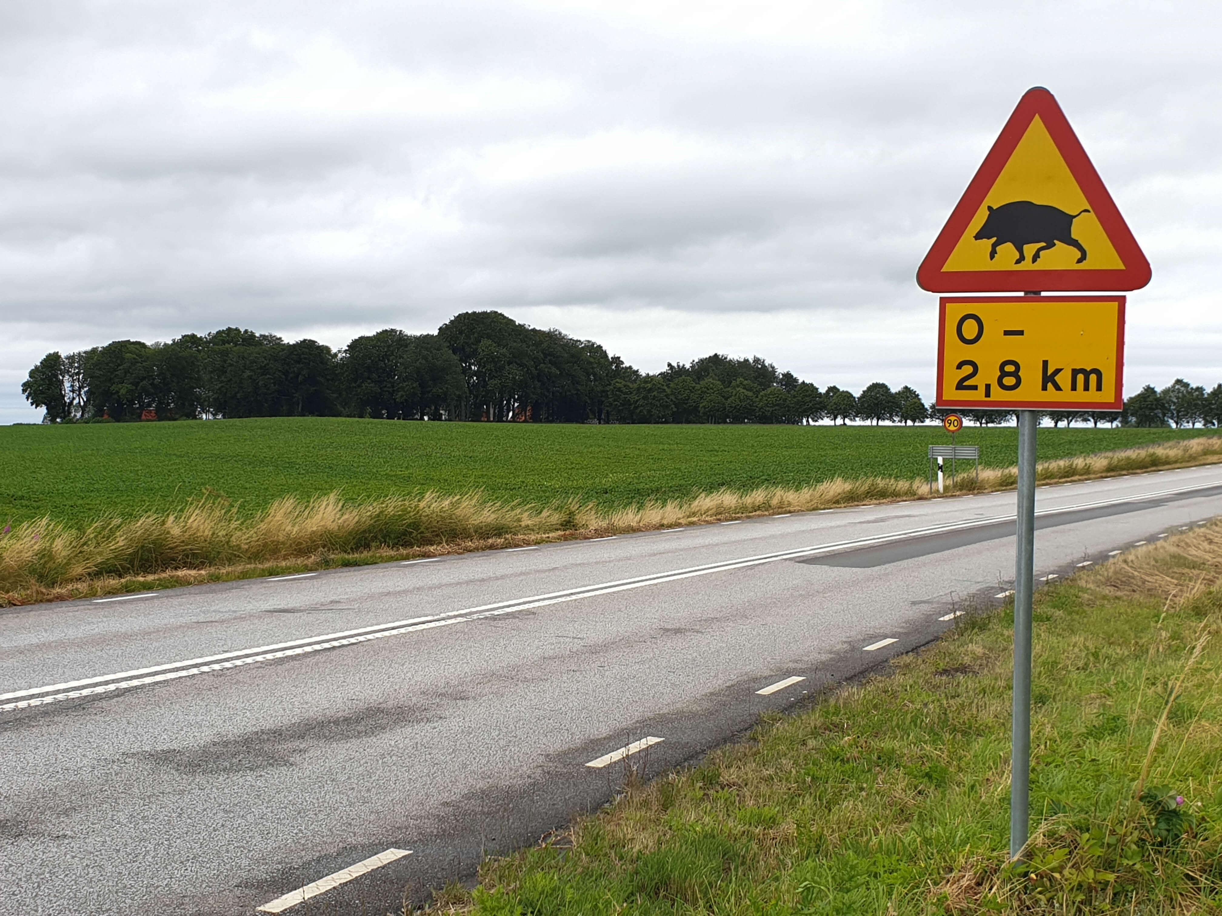 Auto huren in Zweden ervaringen