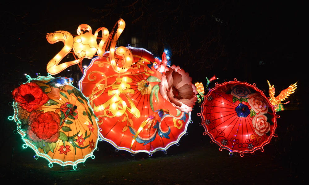 China Light in ZOO Antwerpen
