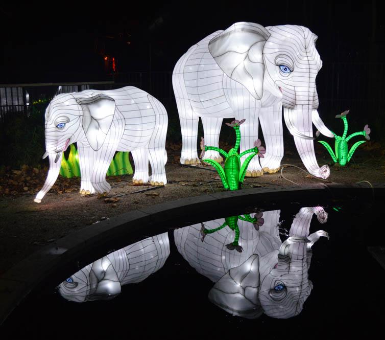 China Light - Antwerpen