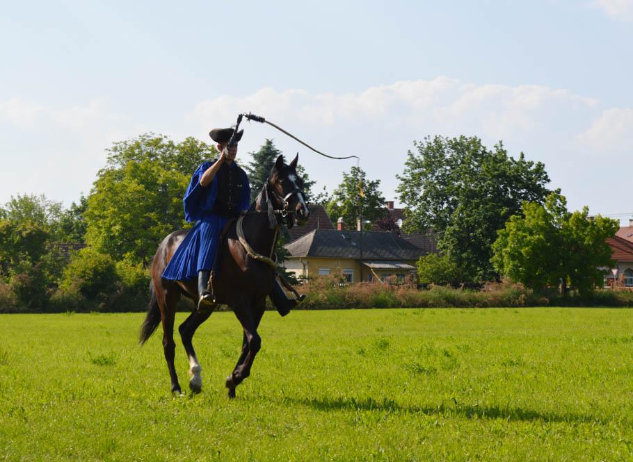 Csikos-Hongarije-cowboys-paarden
