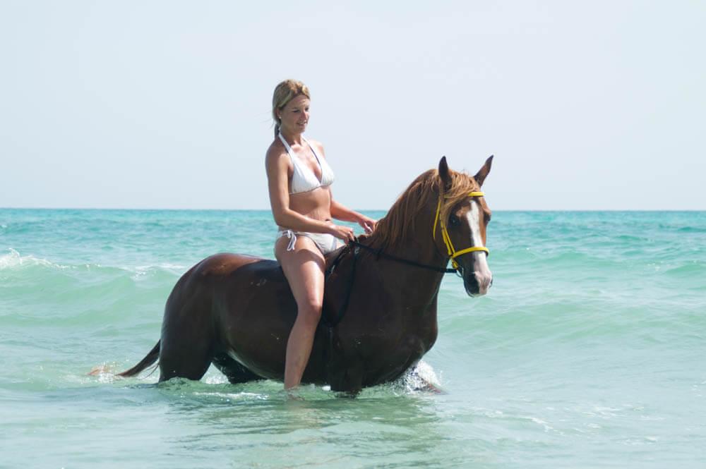Tips voor veilig zwemmen met een paard
