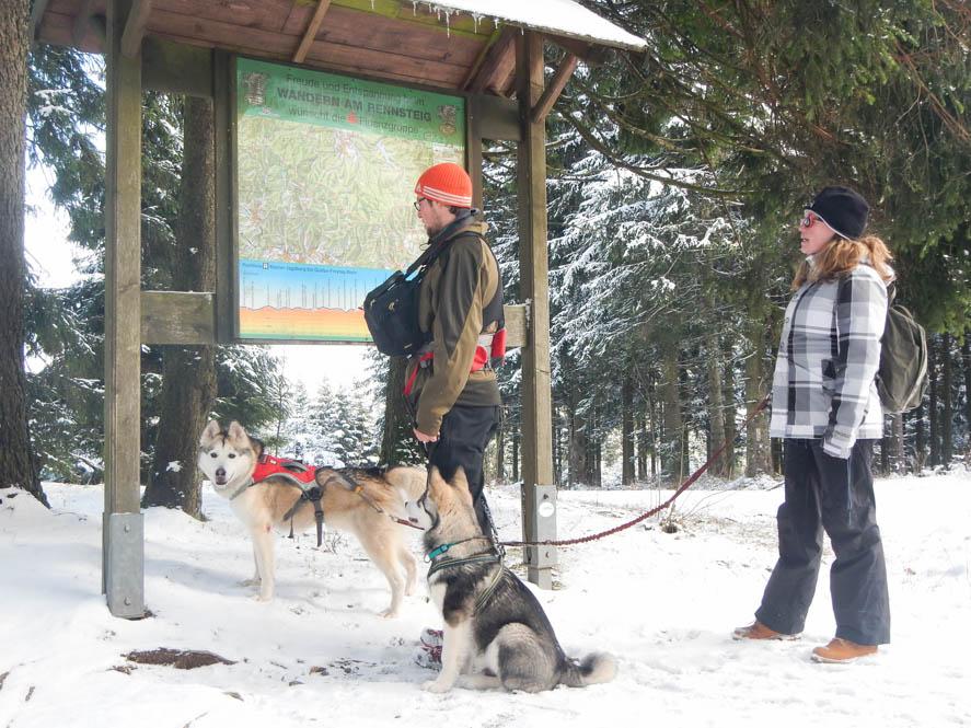 Dog trekking met Husky's - Duitsland