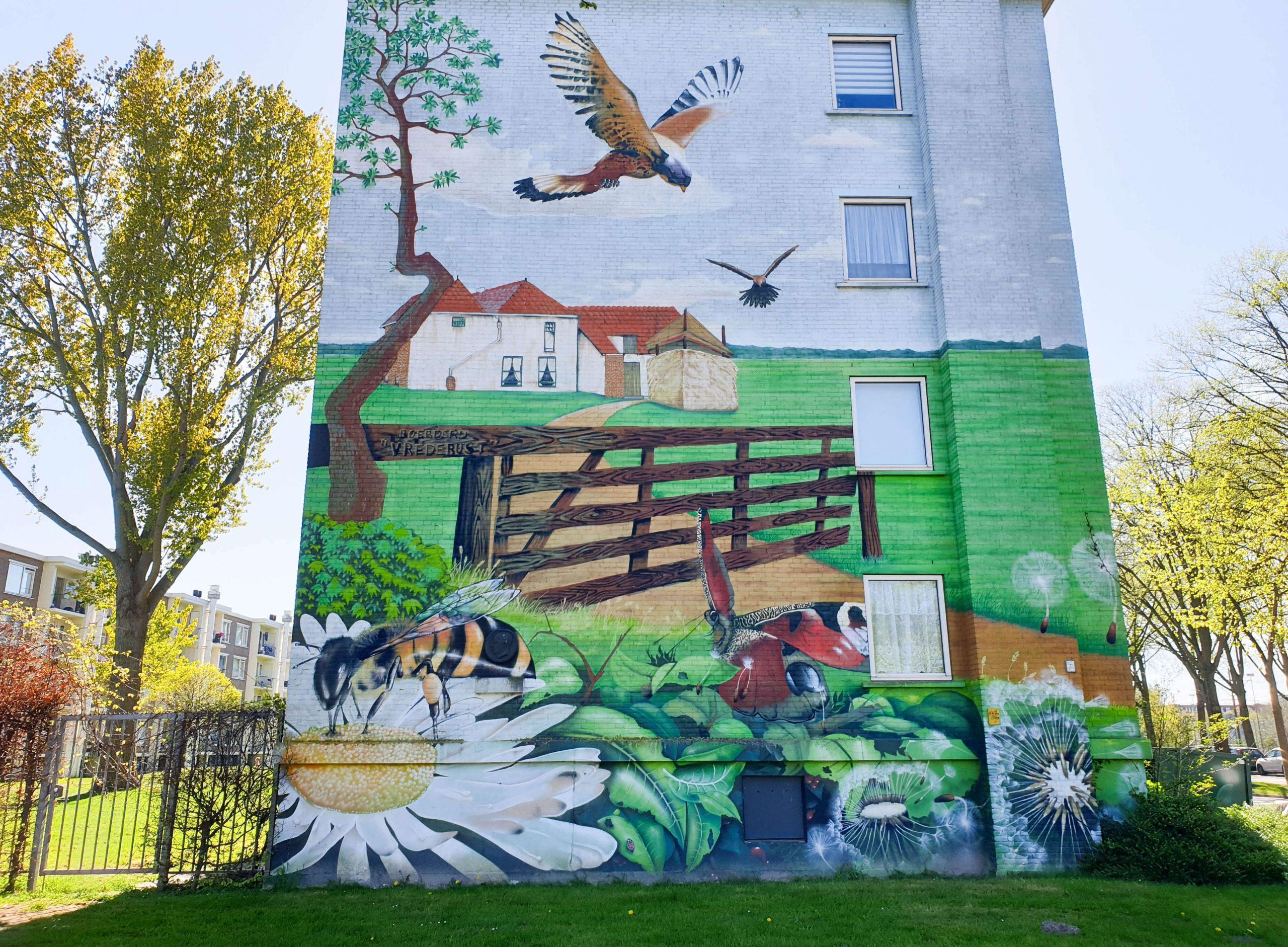 Street Art Drapeniersgaarde
