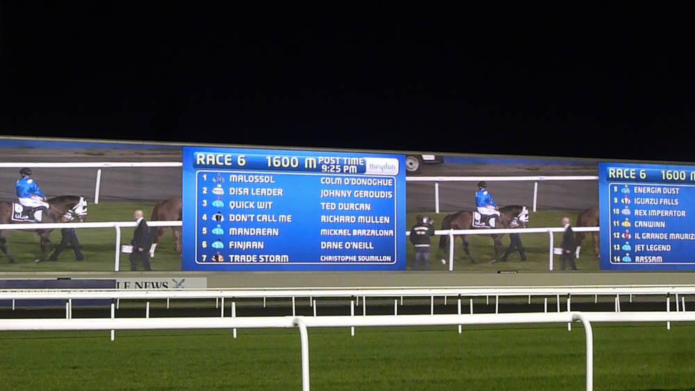 Dubai - Paardenraces