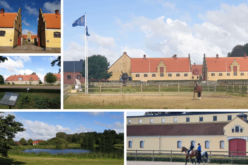 Flyinge Kungsgård – de paardenhoofdstad van Zweden