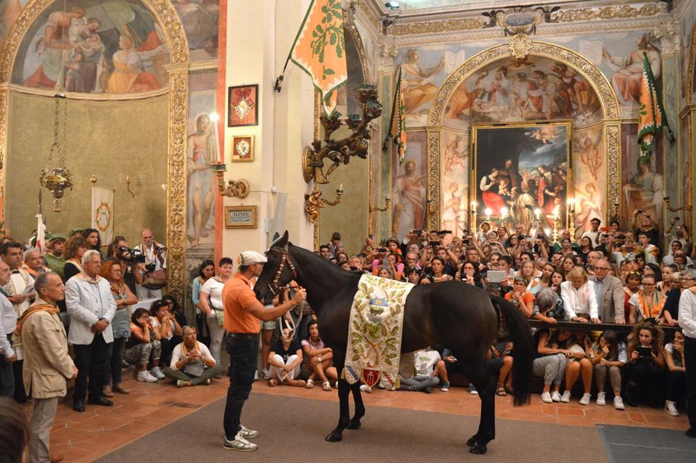 Barbaresco Niccolo met het paard Istriceddu
