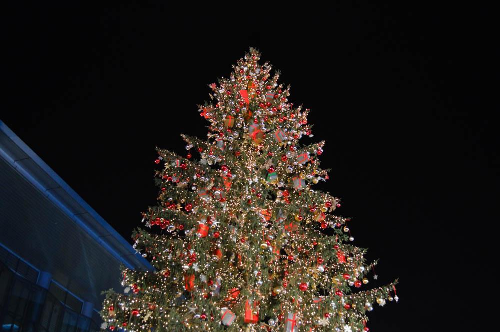 Grootste kerstmarkt Nederland-kerstmarkten
