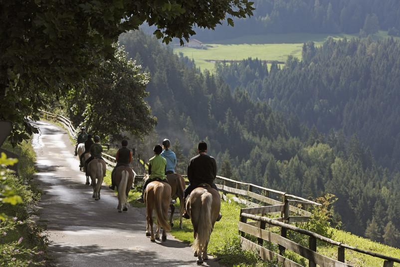.Paardrijden op een Haflinger in Zuid-Tirol