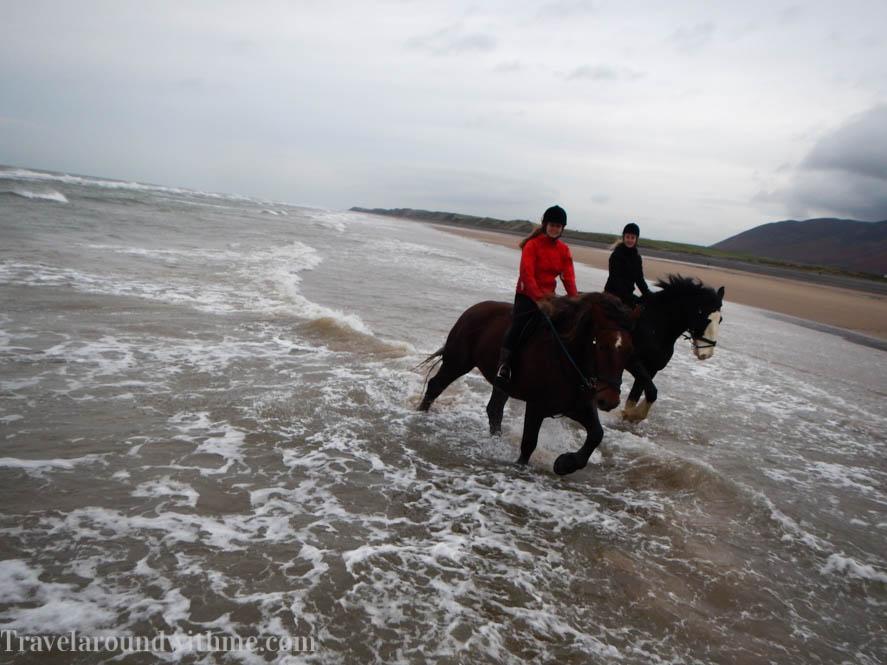 Heavy Horses - Lake District