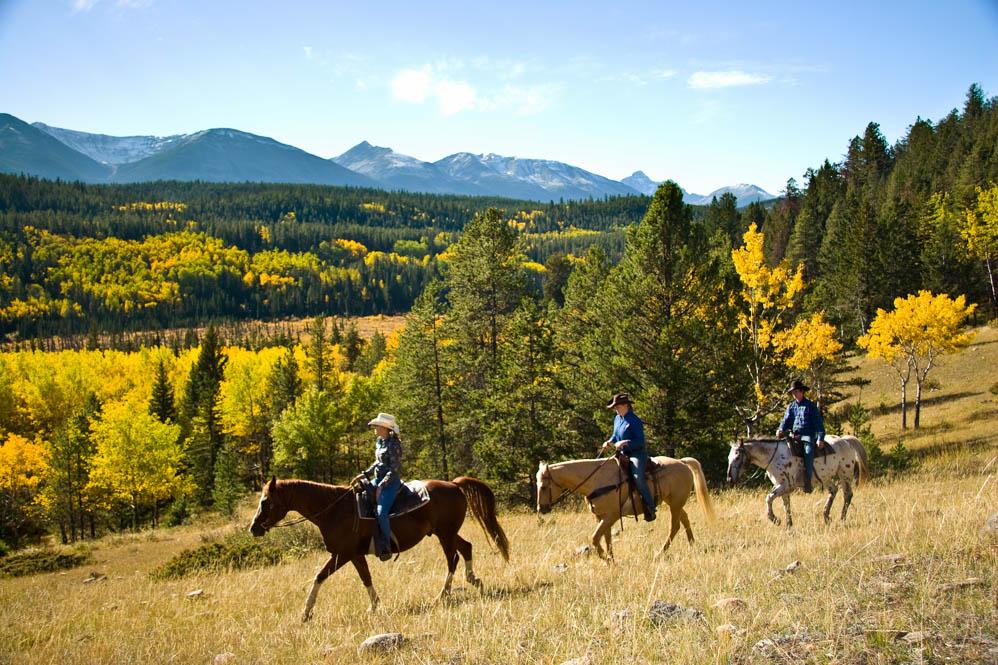 Outdoor avonturen in edmonton en jasper canada reismagazine for Where to go horseback riding near me
