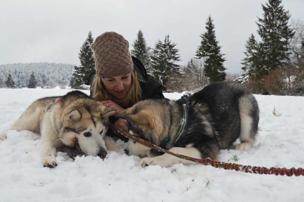 Winterse avonturen met husky's