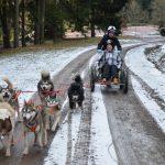 Racen door de modder met husky's