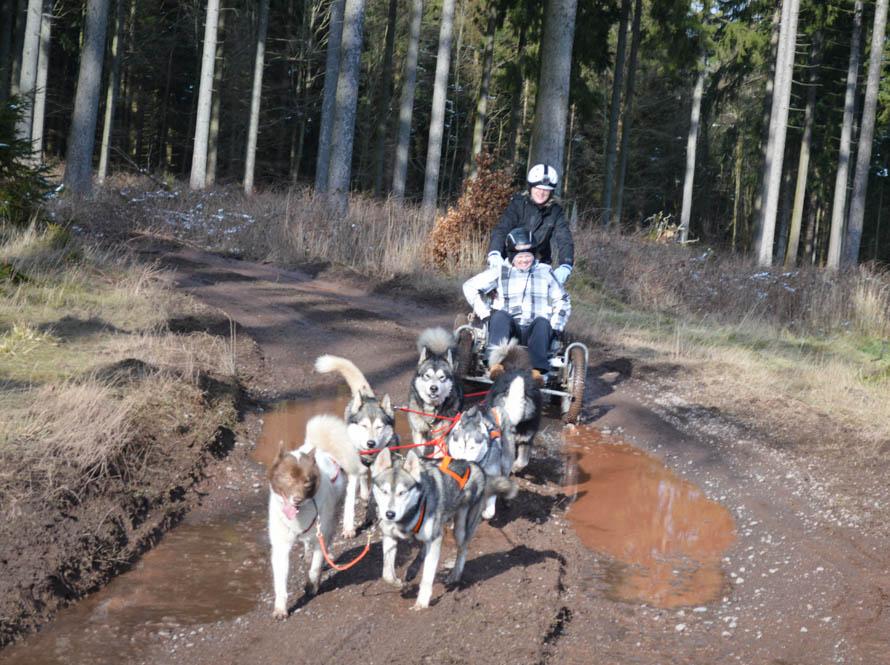 Door de modder scheuren met husky's