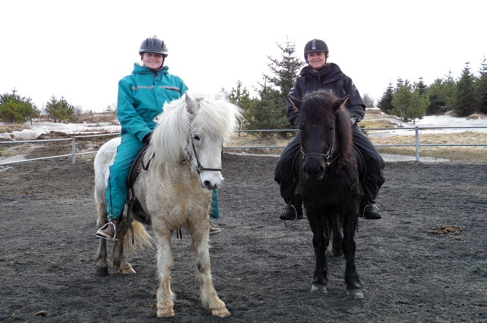 IJsland - Paardrijden