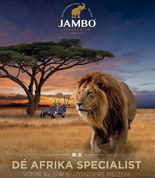 Jambo reisbrochure