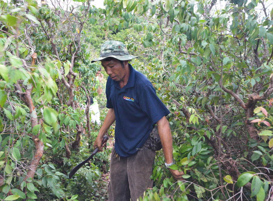 Hike trail Koh Talu