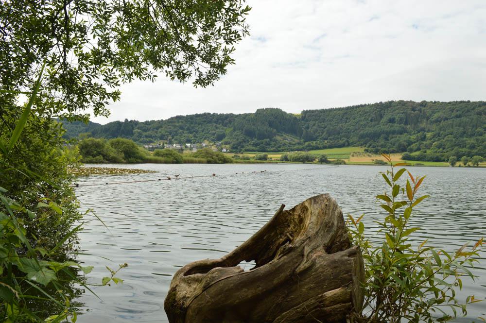 Meerfelder Maar - Eifel - Duitsland