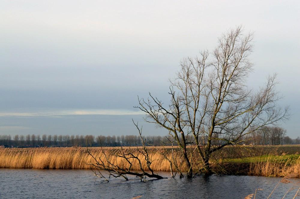 Meetjesland-Belgie-Natuur