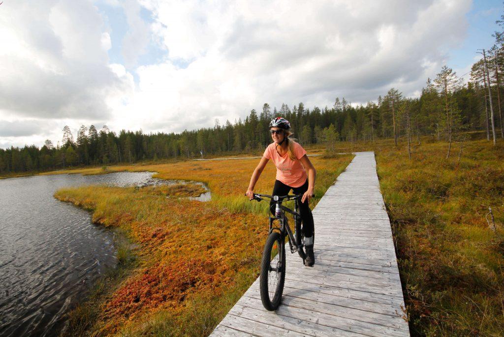 Fatbiken door de Finse bossen