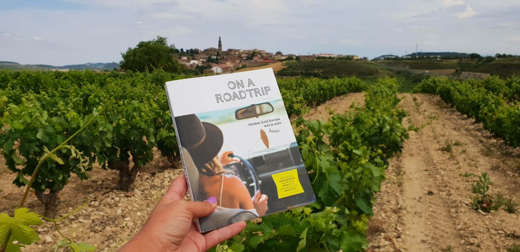 Leuke boeken over roadtrips