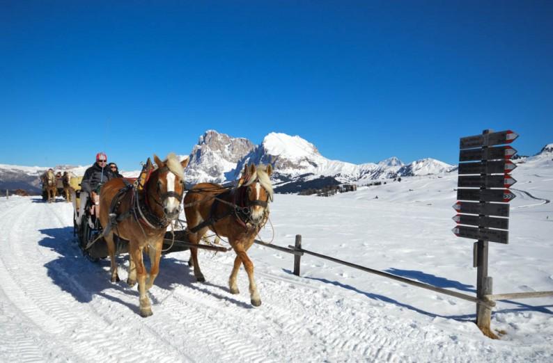 Met paardenslee door winters landschap Zuid Tirol