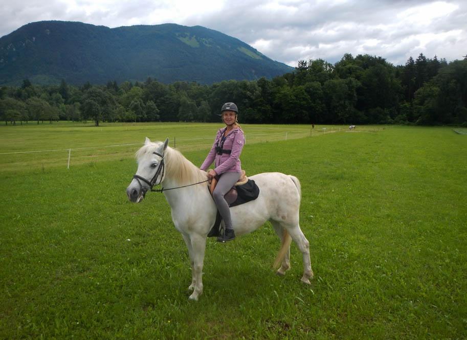 Paardrijden in Slovenie op een Lippizaner
