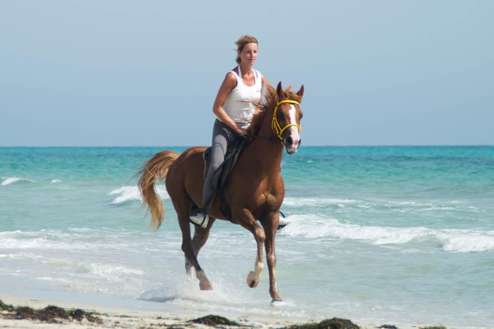 Paardrijden Djerba - Tunesie