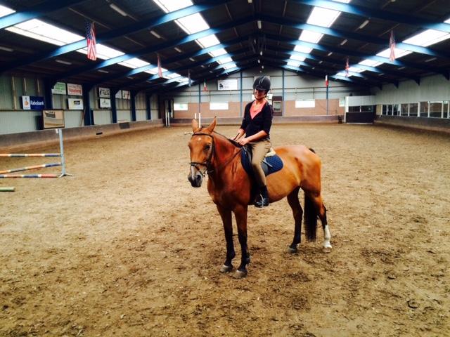 Paardrijden Laurenshoeve Den Ham