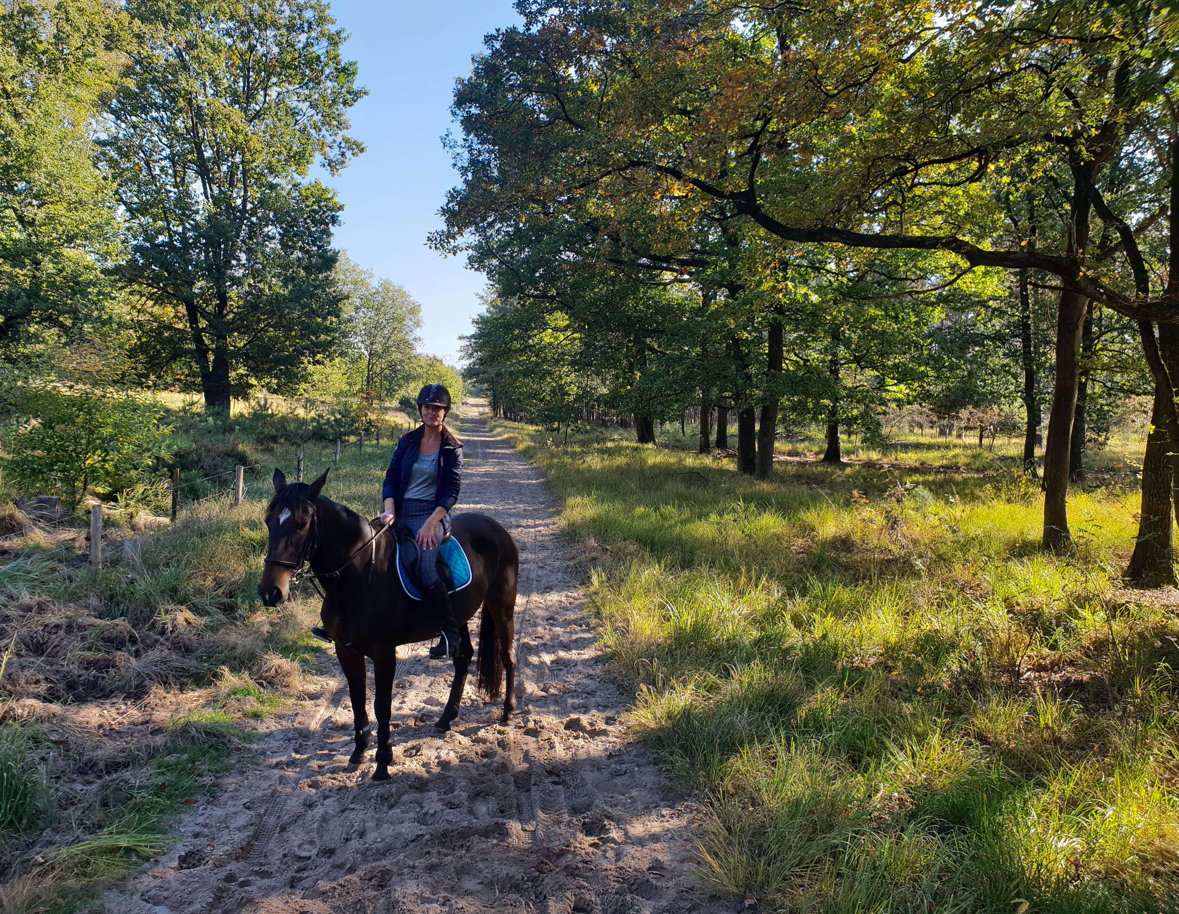 Dagje paardrijden in Nationaal Park De Meinweg in Limburg