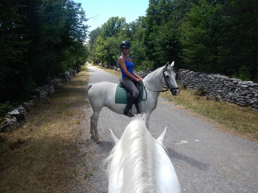 Paardrijden op een Lippizaner in Lipica - Slovenie