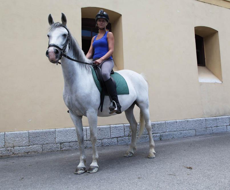 Paardrijden - Lipica - Slovenie