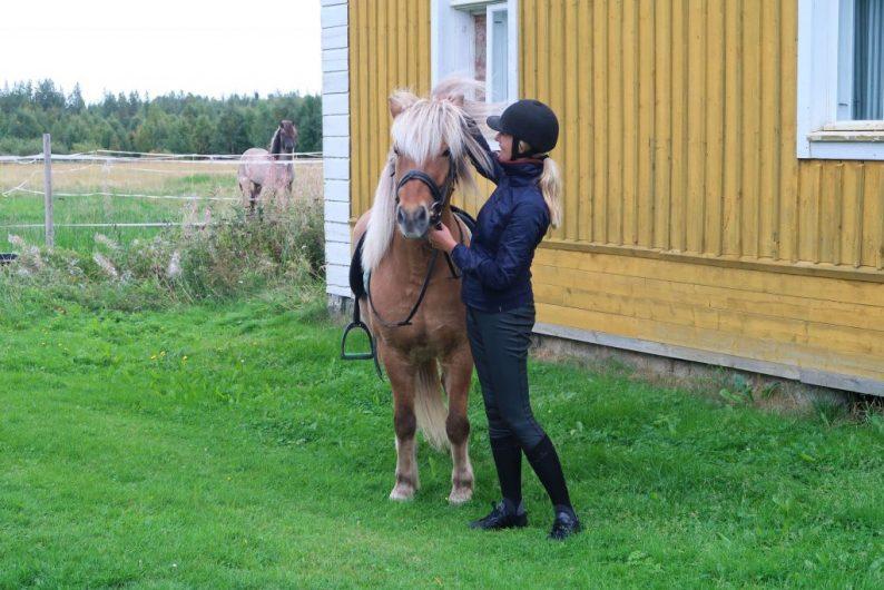 paardrijkleding bij Decathlon