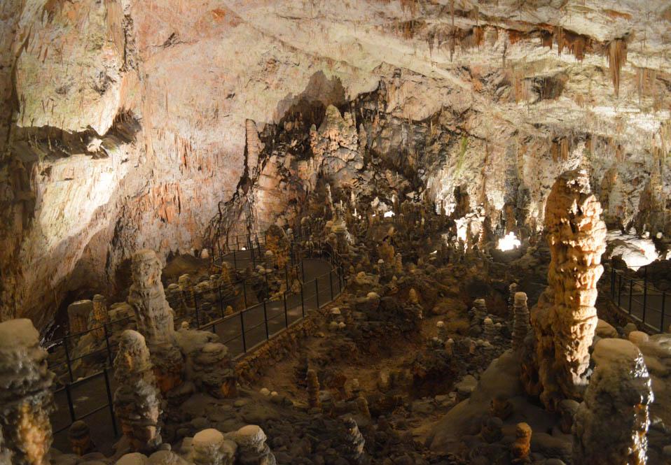 Postojna grot - Slovenie