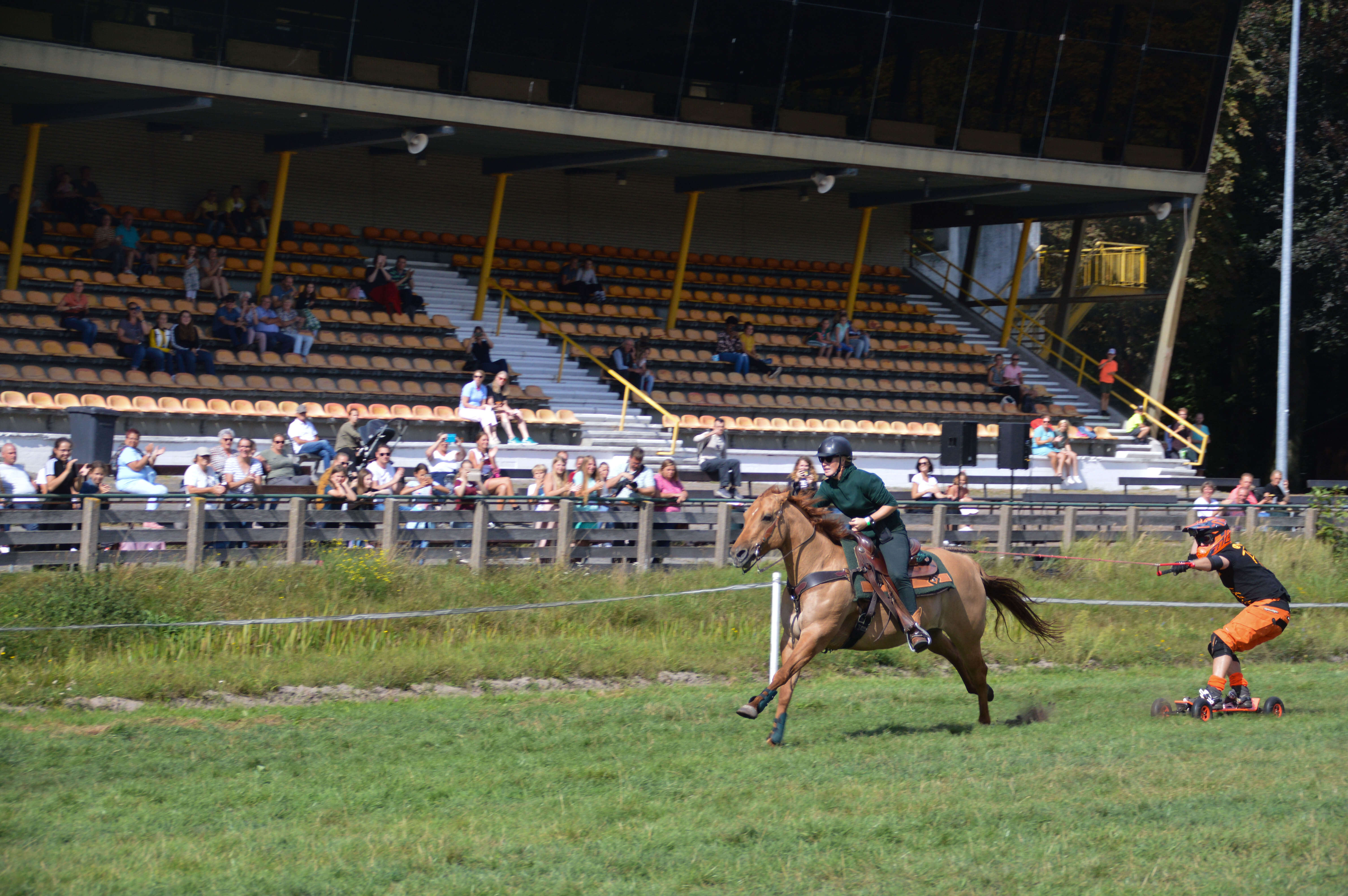 Horseboarding Showteam