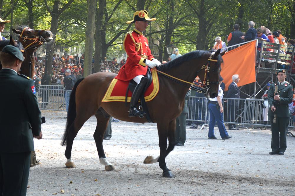 Paarden Prinsjesdag