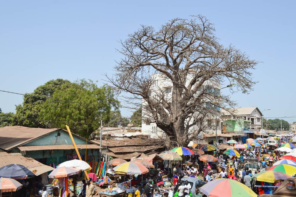 Serrekunda Market - Gambia