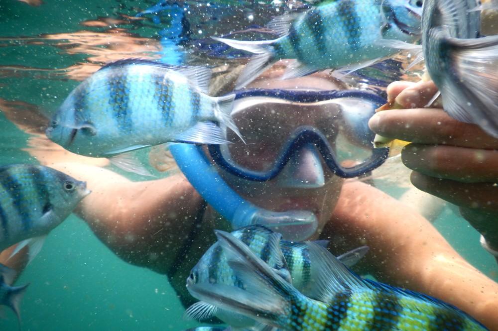 Snorkelen op Koh Talu