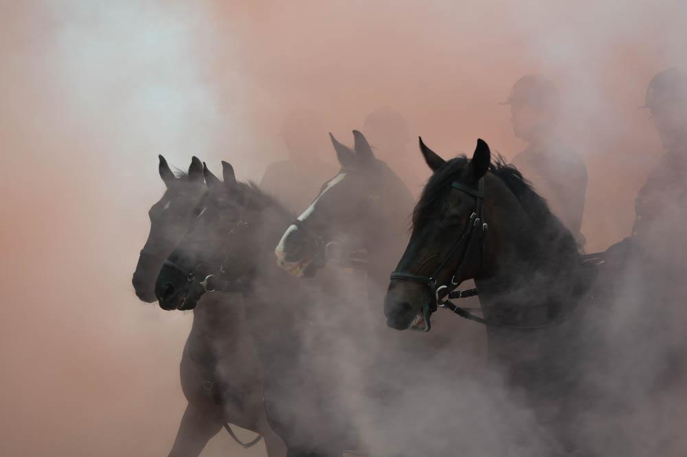 Rook oefening voor de paarden
