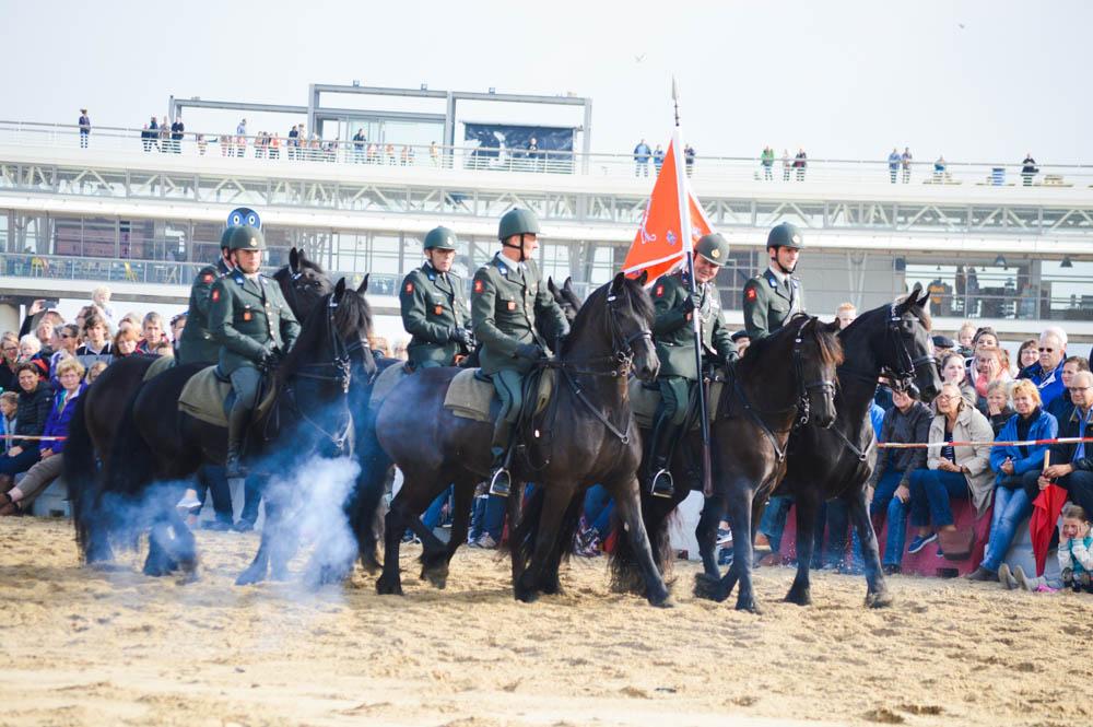 Training strand paarden