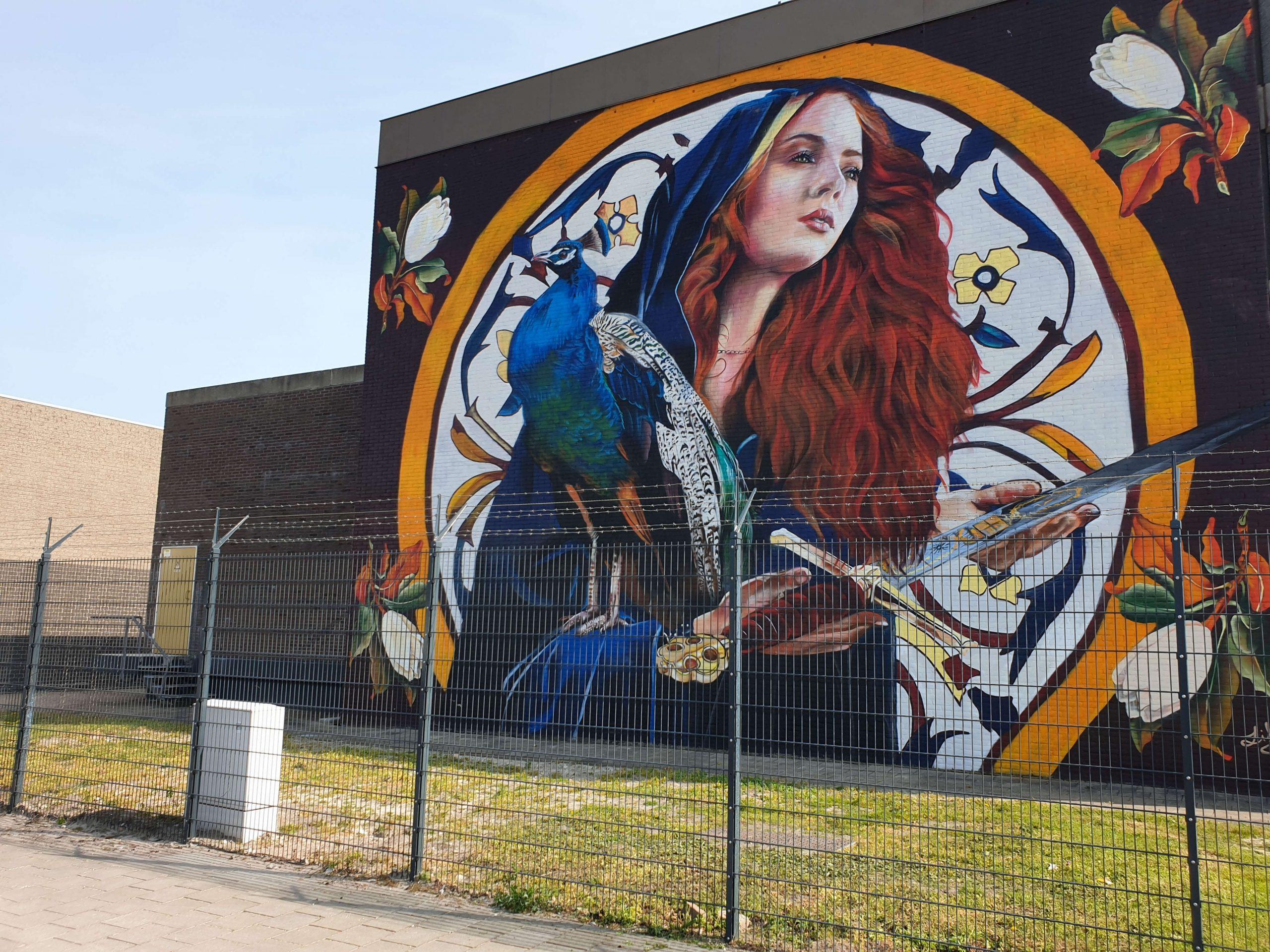 Mooiste Street Art van Den Haag