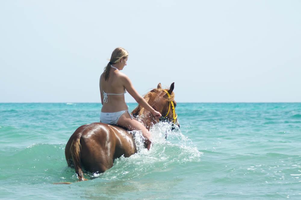 Zwemmen met paarden op Djerba